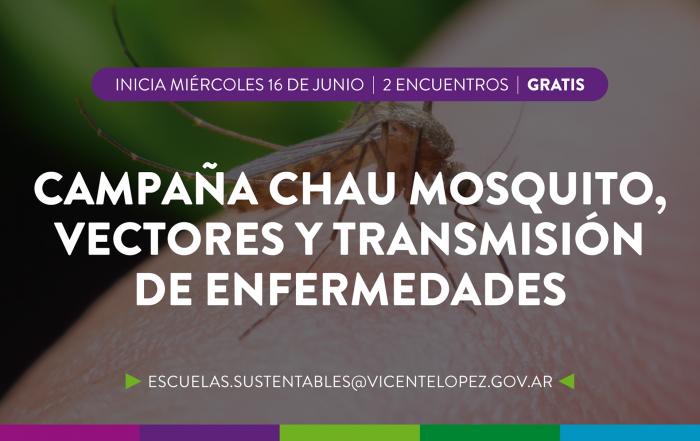 #CapacitaciónDocente > Chau mosquito